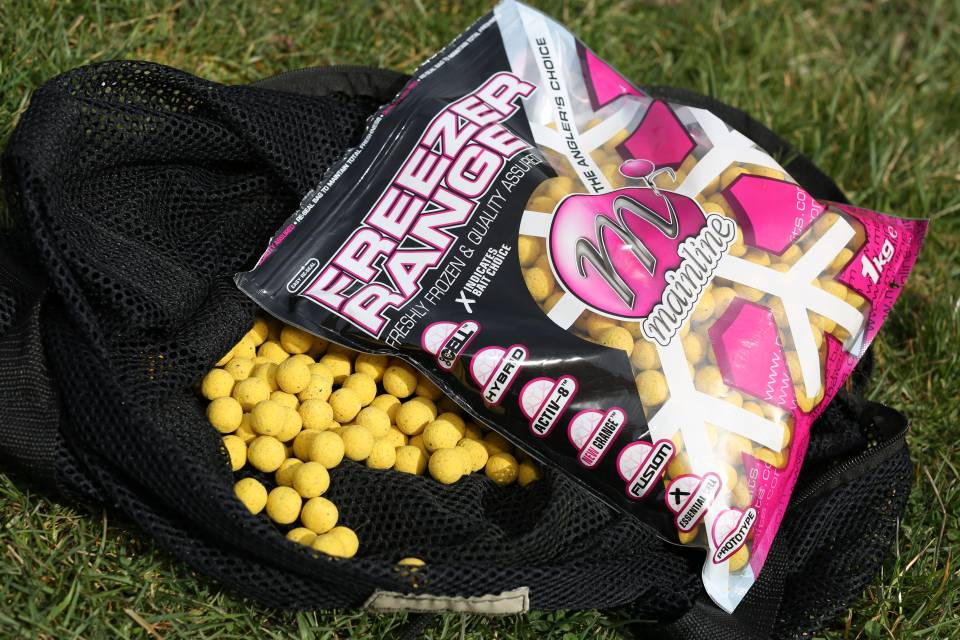 Photo of Win 10kilos Of Essential Cell Freezer Baits