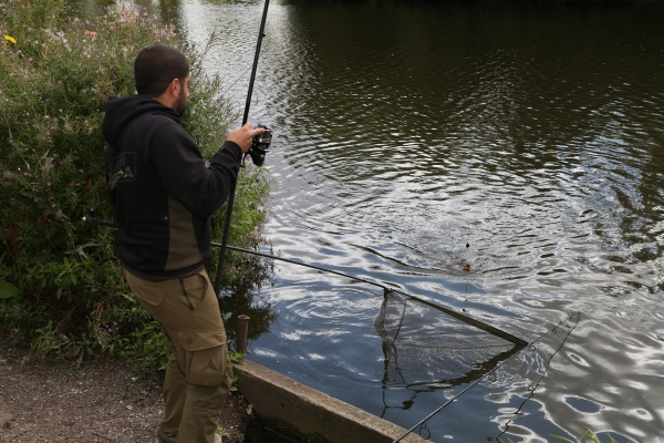 Another fish hits the net