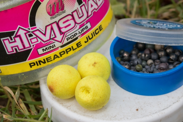 Dave regularly uses a weighted pop-up as a hookbait, they're super-effective.