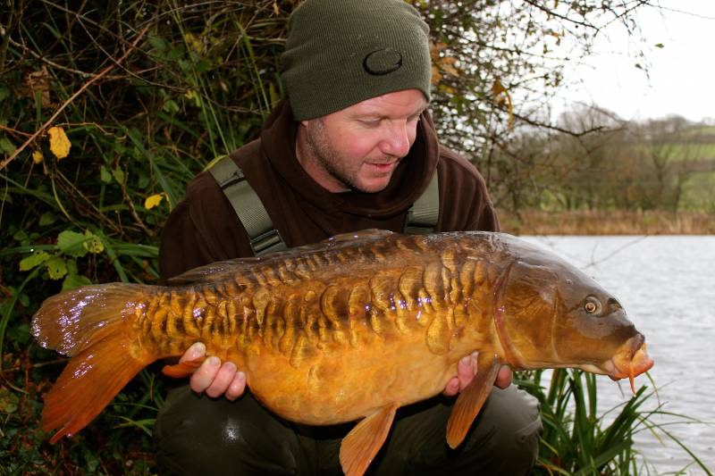 This heavily scaled mirror couldn't resist the baiting approach