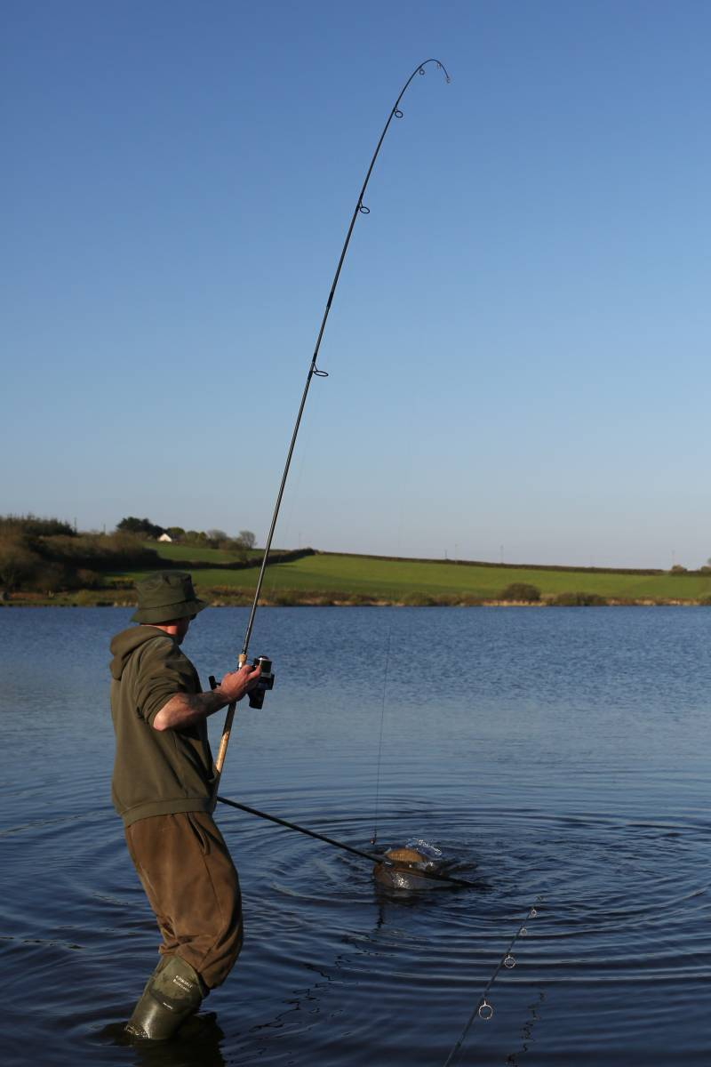 Choose a well-stocked venue such as Upper Tamar and the action can be prolific