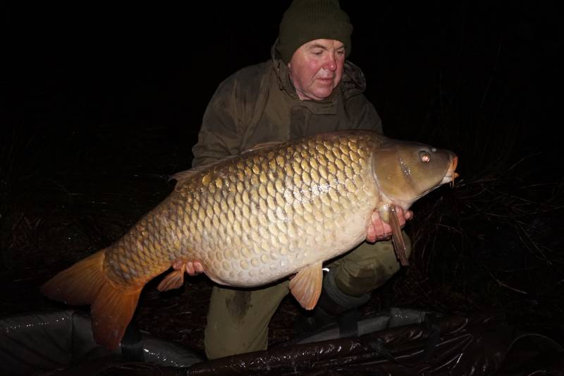 A lovely 53lb common
