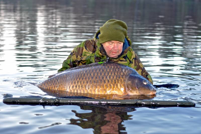 The Perfect Common 86lb 4oz! There was no way I could lift a carp of this size out for your normal catch shot, but the memory was big enough!