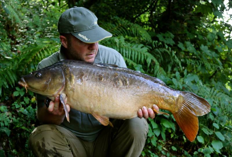 The last one, a very dark scaly recognisable mirror