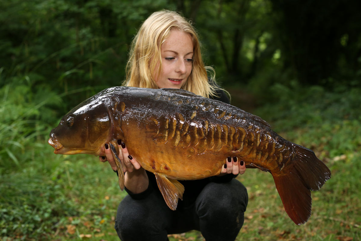 How To Make A High Attract Pva Stick