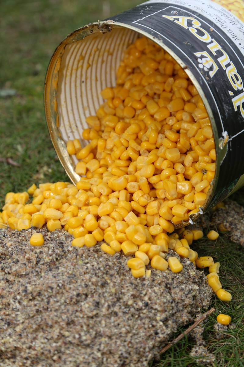 Corn is another good addition to the mix – especially when it comes to matching the hookbait