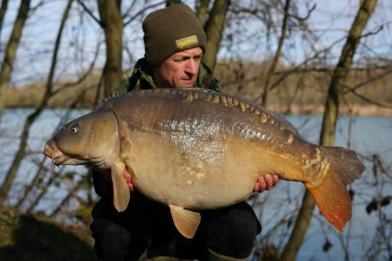 A big carp from a small amount of bait pumping out a large food signal