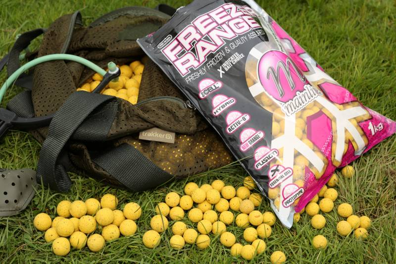 Food source boilies: everything a big pit carp is looking for