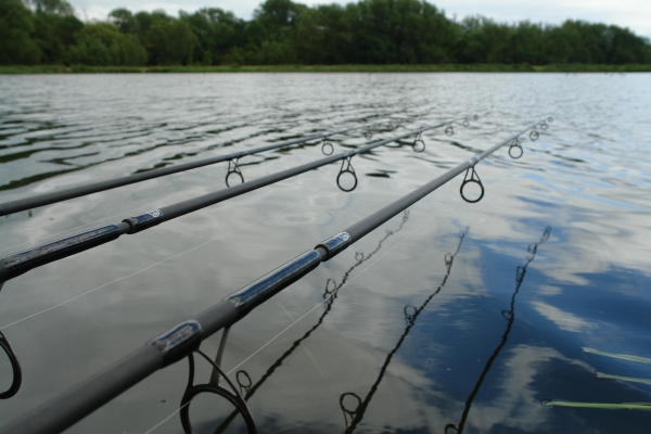 My new rods ready for battle