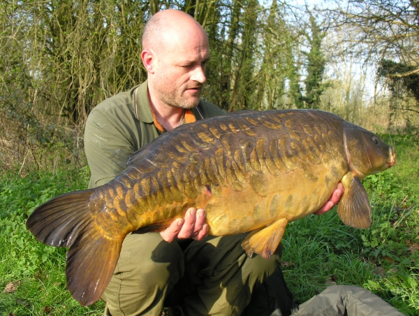 A heavily scaled Dinton beauty!