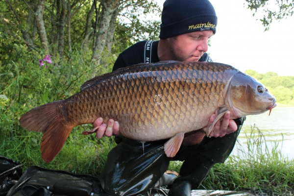 Next was this perfect mid 20 common.