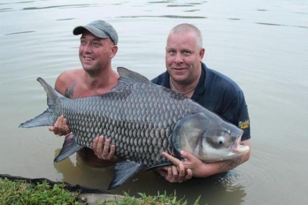 A massive 90lb Siamese carp!