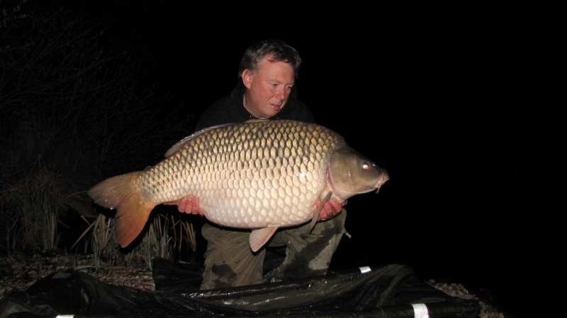 Upper forty common