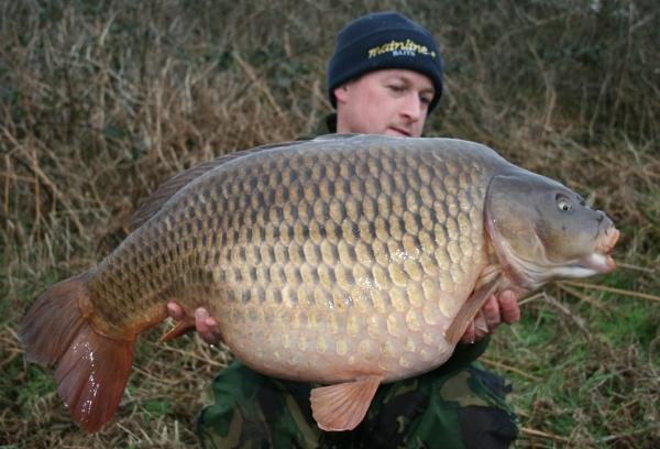 33lb of pristine Argal Lake common carp