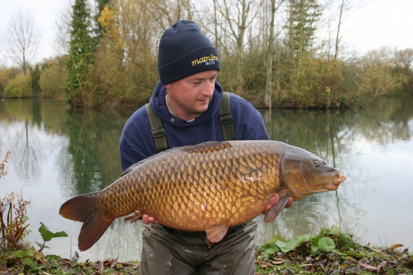 A nice winters common from Willow Pool at Linch Hill and yet another carp on my Longshank Rig