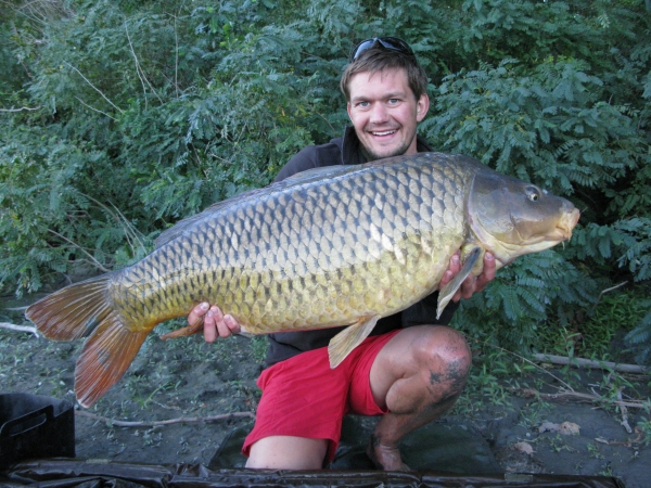 A nice forty plus wild River Rhone common.