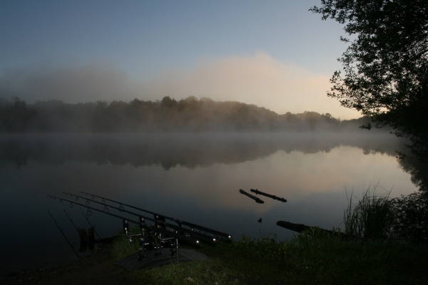 Most mornings I was greated by a fish at sunrise whilst I watched an incredible dawn unfold