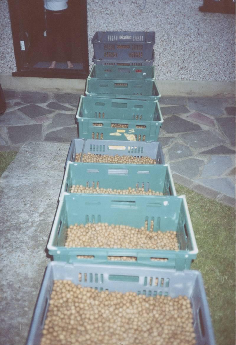 1995/96: The 'Grange' bait was formed
