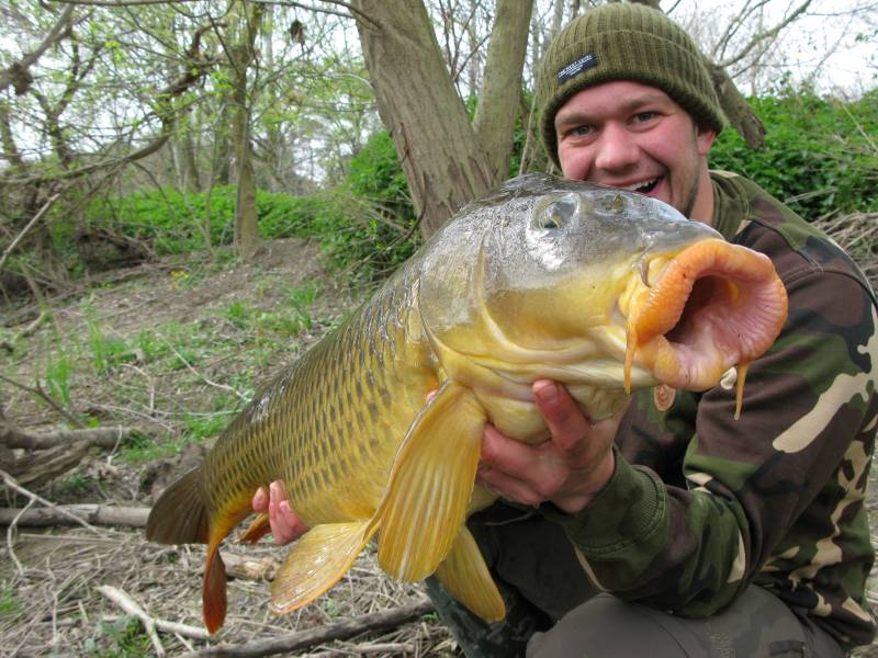 A 20lb carp can easily take a 28mm boilie