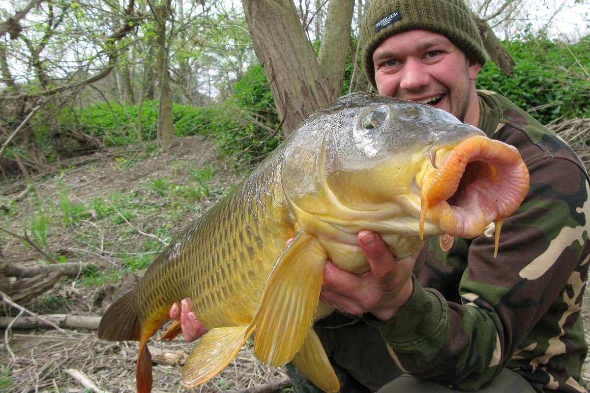 Hookbait Tips From Team Mainline