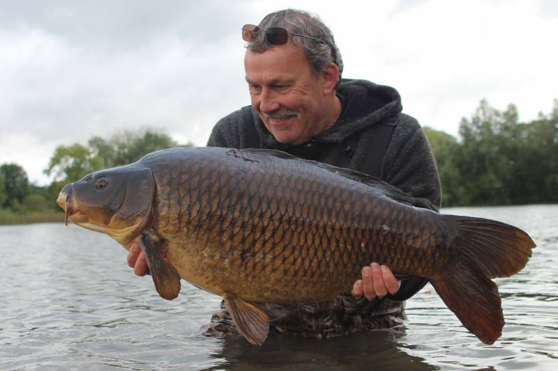 Carp feeding confidently across a spread of baits are far more catchable