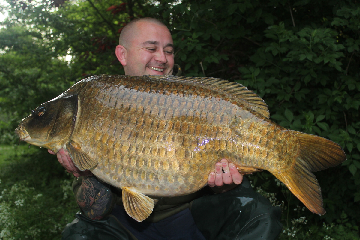 The 'Ghost Common' from Stoneacre