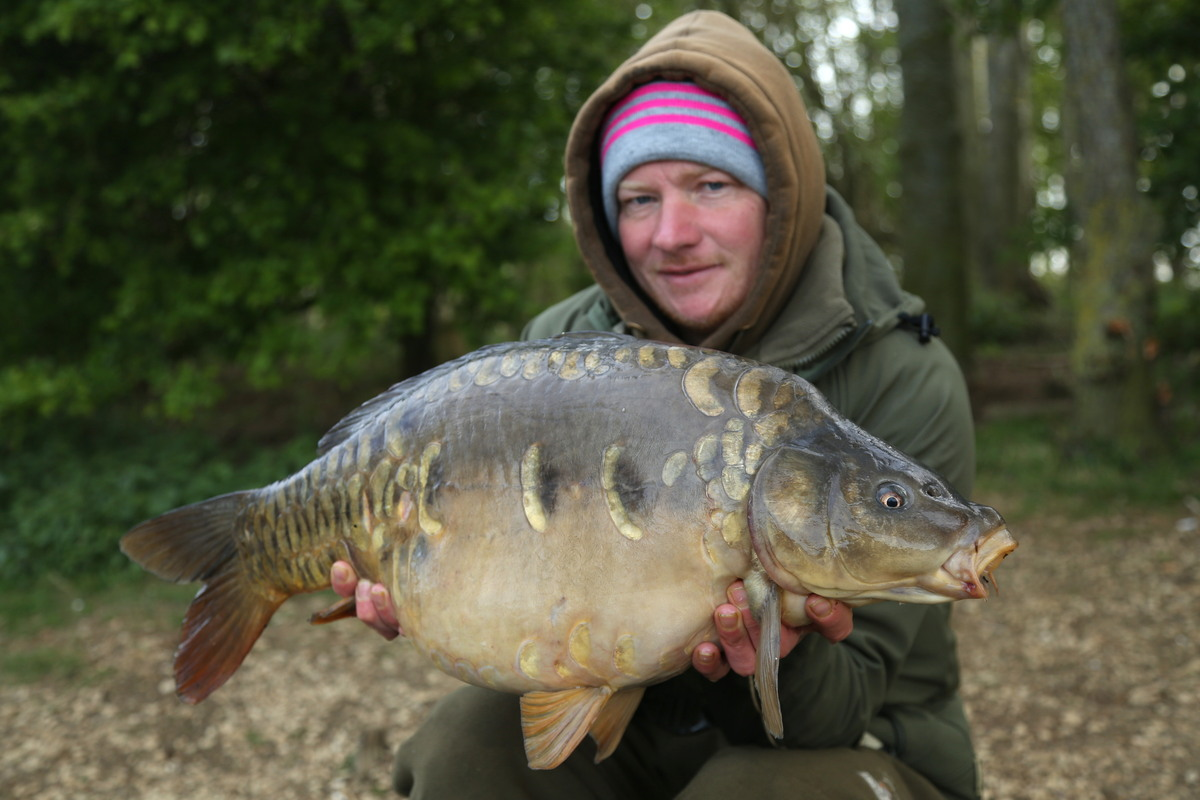 A lovely B1 mirror