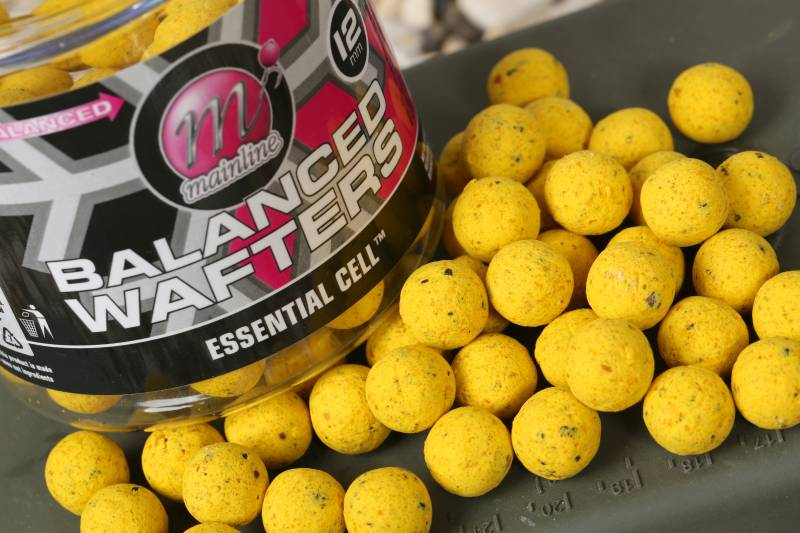 12mm Balanced Wafters one of my favourite hookbaits
