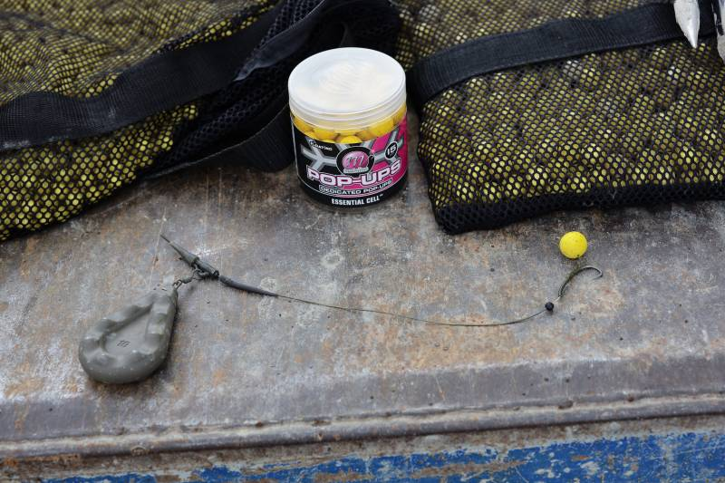 Yellow is generally a good starting point with highly visually in your face hookbaits!