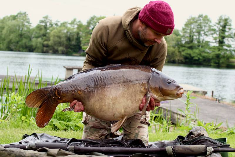 44lb of Horton carp limited time does not mean you can not catch big, pressured fish!