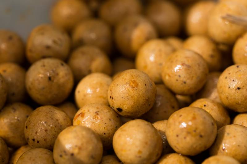 Packed with nutritional values, boilies like this are exactly what the carp are looking for