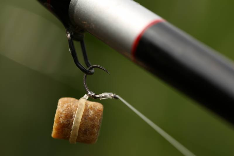 I'll always start a session by 'matching the hatch', i.e. fishing with the same size pellet that I am feeding