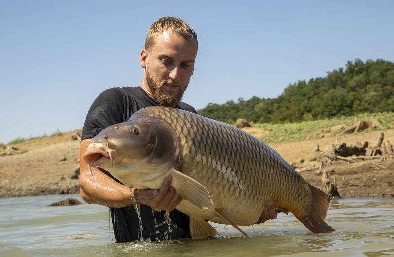 Carp love Tigers – like this huge 65lb common!