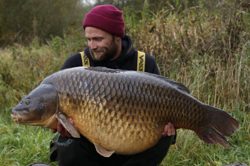 A huge Belgian common falling to water-soaked baits