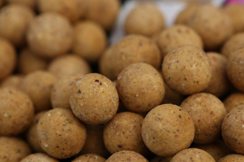 Cell boilies; if there's a lack of nuisance fish I'll chop some up too