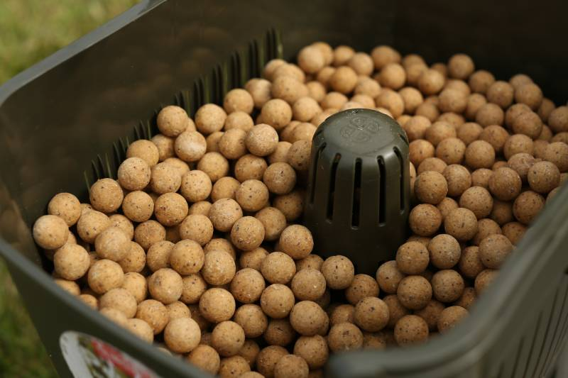 Cell boilies are the perfect starting point in winter