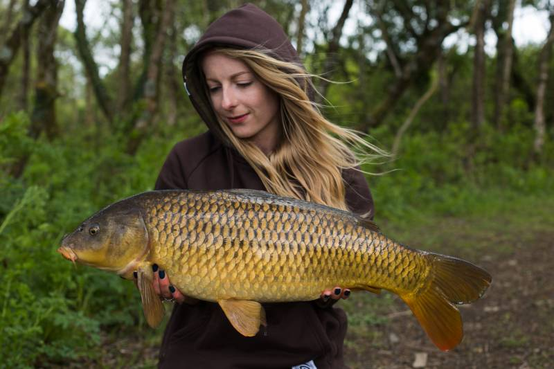 An early season common after pre baiting the area