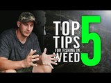 Top 5 Tips For Fishing In Weed